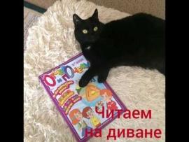 "Embedded thumbnail for Видеообзор журналов ""Читаем на диване"""