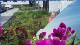 Embedded thumbnail for Украсим мир цветами